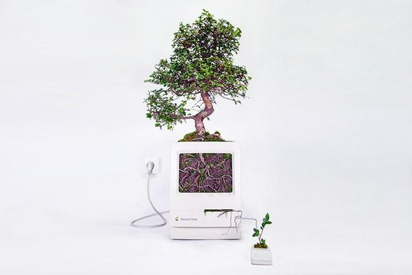 Oude hardware van Apple als stijlvolle plantenbakken