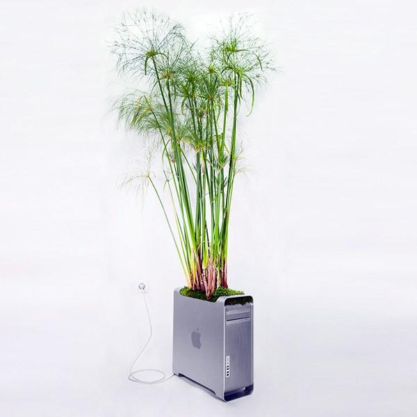 apple-computer-plantenbak2