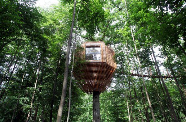 Origin Tree House: een boomhut die van alle gemakken is voorzien