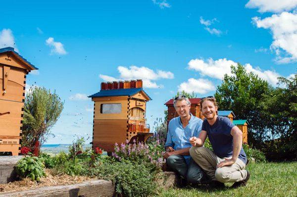 Flow Hive: een innovatieve bijenkorf met honingtap