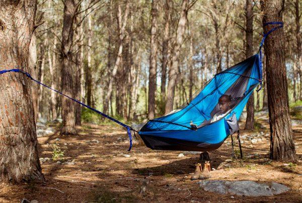 Crua Koala: de koning onder de hangmatten