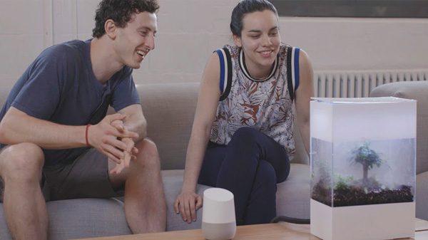 Google heeft een terrarium met kunstmatige intelligentie ontwikkeld