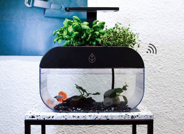 EcoGarden: een aquarium dat planten onderhoudt en vice versa