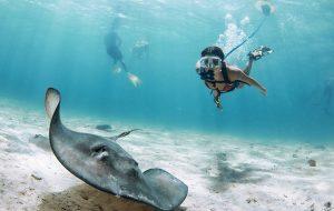 Nemo: Kickstarter-hit laat je duiken zonder zuurstoffles