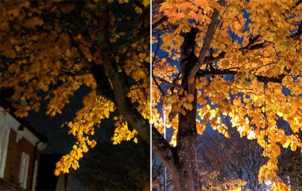 Met Google's Night Sight maak je fantastische foto's in het donker
