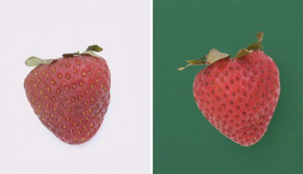 Speciale coating houdt groente en fruit langer vers
