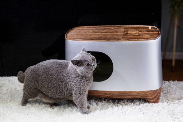 iKuddle: de kattenbak die zichzelf verschoont