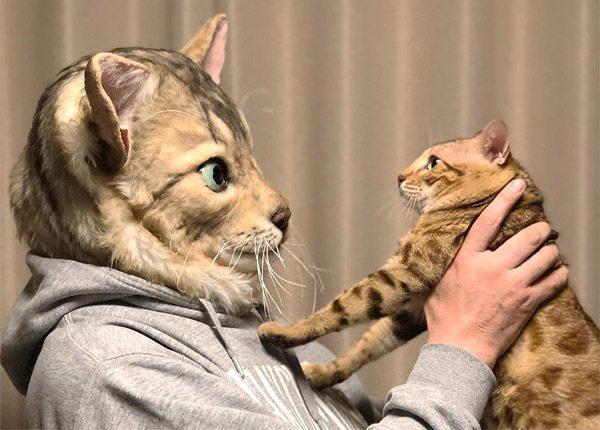 Japanse studio maakt maskers op basis van jouw kat