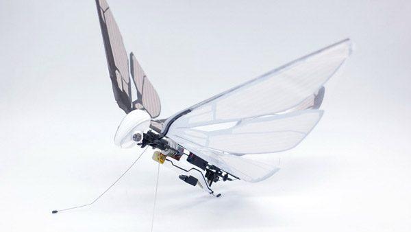 MetaFly: een op afstand bestuurbare robotvlieg