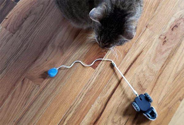 Mousr: een kattenspeeltje dat autonoom je kat bezig houdt