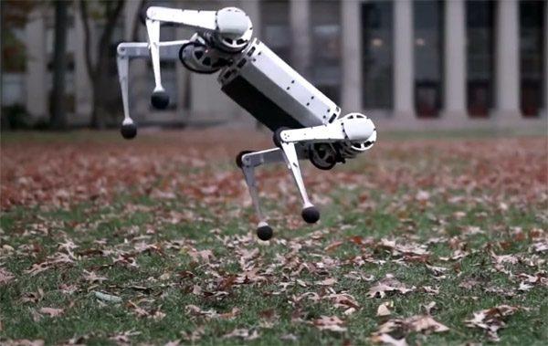 De kleine versie van de Cheetah robot doet nu ook salto's