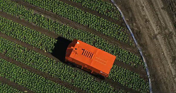 FarmWise: de robot die de boer helpt met kunstmatige intelligentie