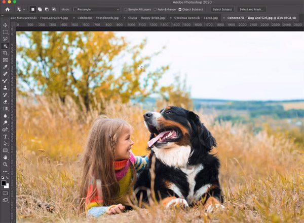 Nieuwe functie van Photoshop laat je heel eenvoudig objecten isoleren