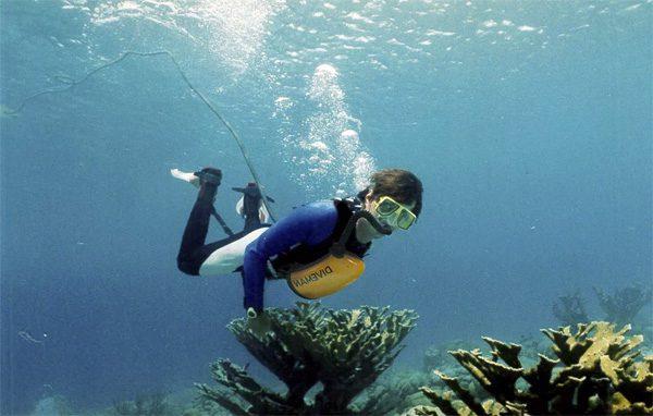 ExoLung: een systeem waarmee je oneindig onder water kan blijven