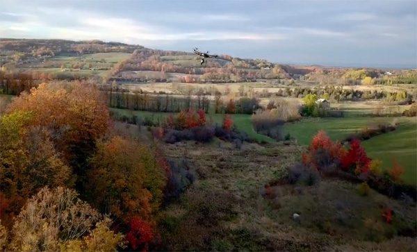 Flash Forest: bomen planten met behulp van drones