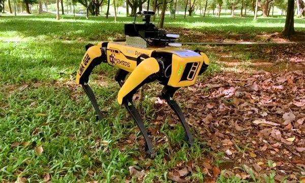 Robothond Spot houdt de wacht in Singaporees park