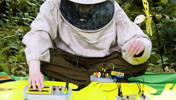 Britse imker maakt elektronische muziek met bijen